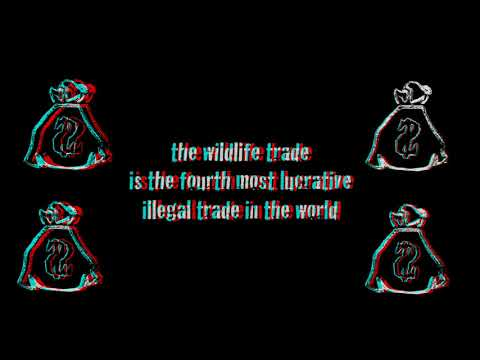The Illegal Wildlife Trade 3D Anaglyph Sample