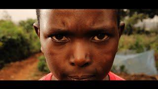 Live My Life - Aloe Blacc