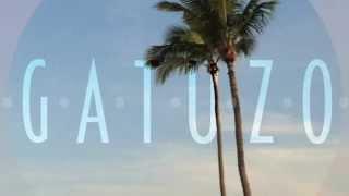 Fergie - Glamorous (Gatuzo Remix)