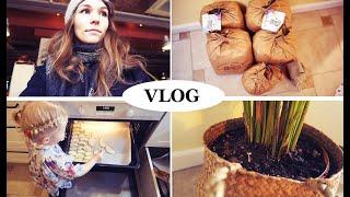 vlog  меняю камеру, 45 кг СОЛИ, что с Островом  - Senya Miro