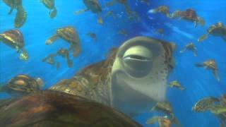"Finding Nemo ""Exit Buddy"" Clip"