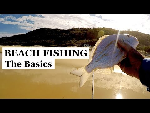 BEACH FISHING BASICS, Fishing