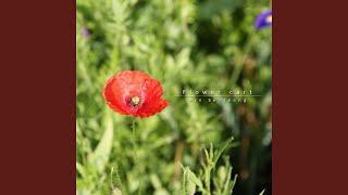 Gambar cover Basicalogy II 엄벙덤벙 꽃