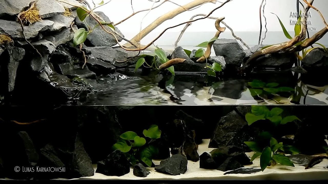 Aquascape setup Series/Waterfall and Riverbank - Animalia ...