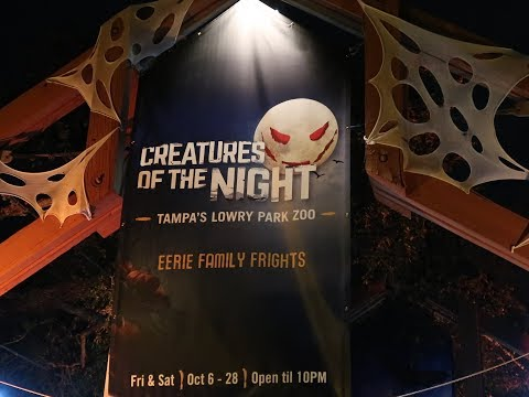 Halloween Event Creatures of the Night Tampa Lowry Park Zoo Vlog