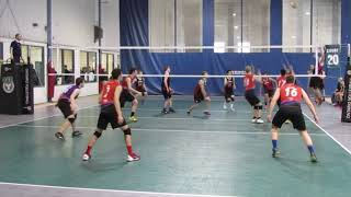 Yashar Mesgar volleyball highlights