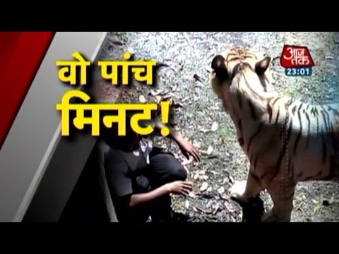 Vardaat: White Tiger Mauls Youth In Delhi Zoo (PT-1)