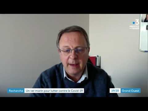 Coronavirus et pistes de traitement: Franck Zal co-fondateur Hemarina (mardi 31 mars 2020)