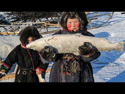Как ловят рыбу