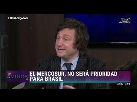 Javier Milei opina sobre el triunfo de Bolsonaro en Brasil