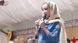 نون العنكبوتة - مامون ترتة - الجبنة تنتنة - اغاني سودانية 2019