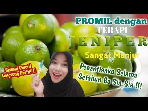 Terapi JENIPER Untuk PROMIL Ala Mba Dewi Yull |  JerukNipisPeras,