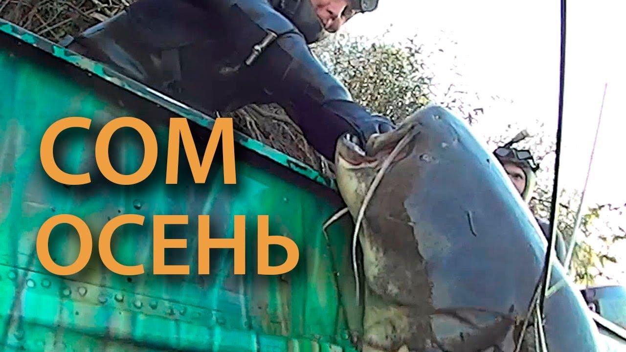 Осенняя подводная охота на трофейного сома и судака. Лучшие моменты прошлого сезона.