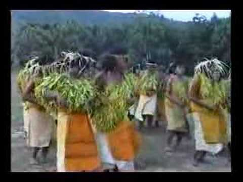 Tikopian girls traditional dancing and Kava preparation