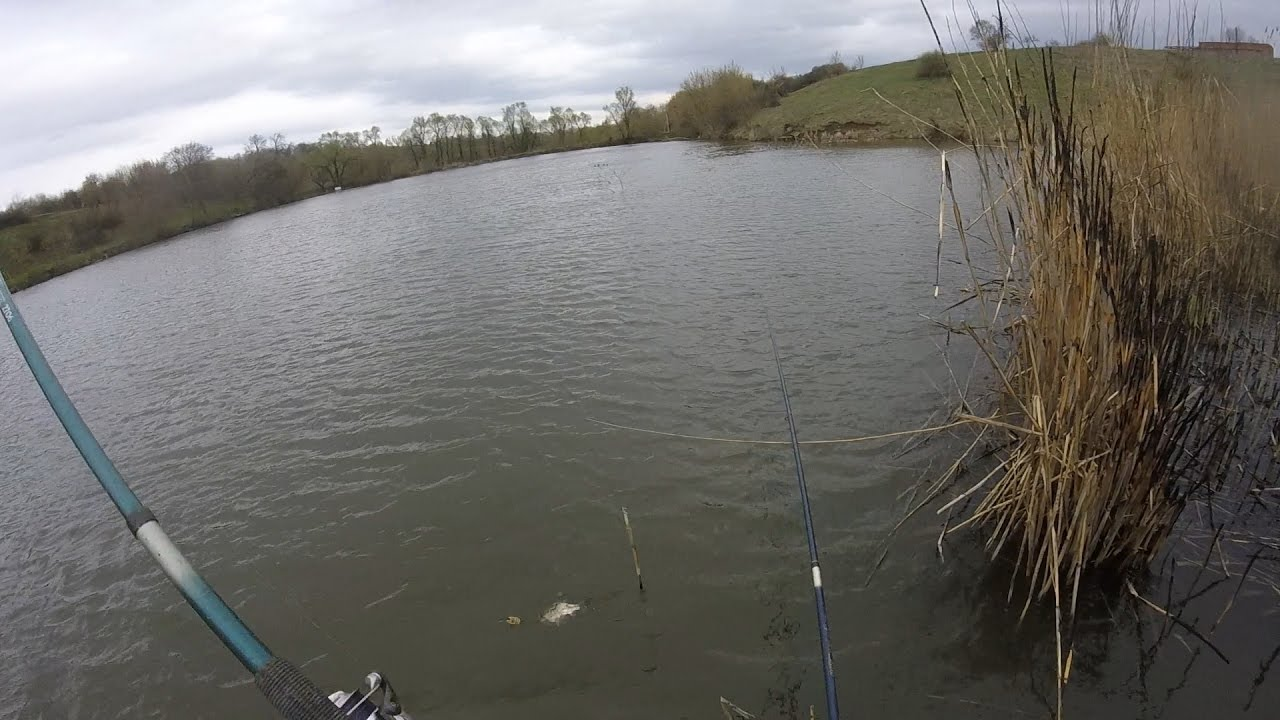 Ловля карася на поплавочную удочку видео бесплатно