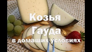Сыр Гауда из козьего молока Мастер класс