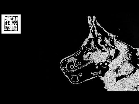 一个不容易看懂的短片,欢迎评论:《红斑狼疮》