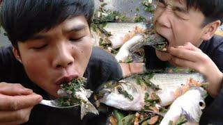 Cá nhảy gỏi cá sống với dưa chuột (ngon tuyệt ) tại bờ ao.