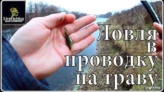 Ловля на траву в проводку осенью. Ловля на поплавок. Река Дон.(LiveFishing)