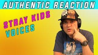 Baixar AUTHENTIC Reaction to STRAY KIDS - VOICES // Guitarist Ellis Reacts #848 //