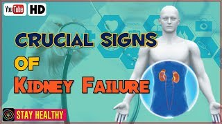 Gambar cover 8 Crucial Signs of Kidney Failure Most People Ignore