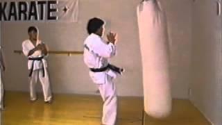 Mae geri / Front kick counter: Enshin Karate Low Kick Combo / gedan mawashi geri