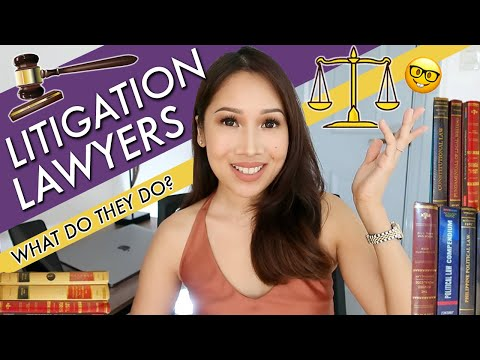 Lawyer Secrets: WHAT DOES A LITIGATION LAWYER DO?
