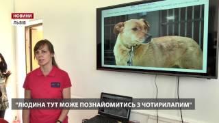 У Львові відкрили перший в Україні центр адопції тварин