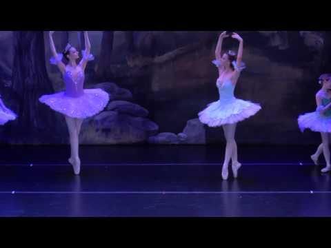 2015 Gillian in South Ms Ballet's The Sleeping Beauty