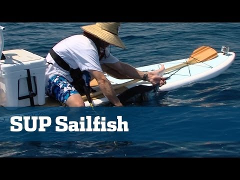 Angler Catches Monster Sailfish From Paddle Board - Florida Sport Fishing TV