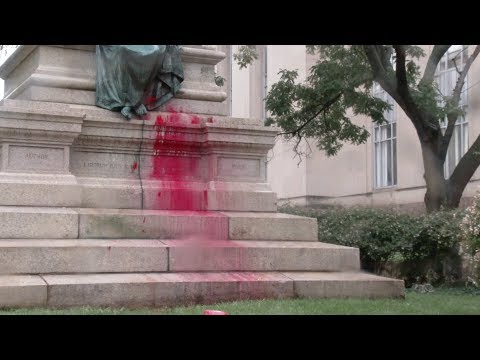 Protesters Pour Paint on DC Confederate Statue, Flour on Daily Caller Reporters