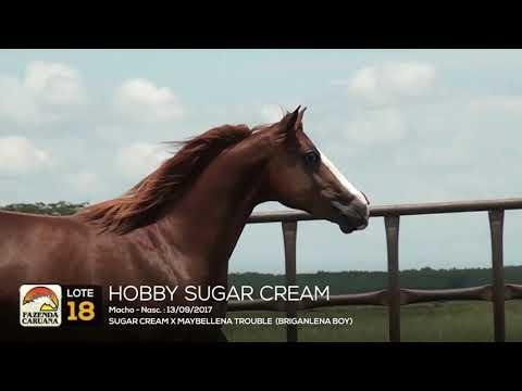 LOTE 18 - HOBBY SUGAR CREAM