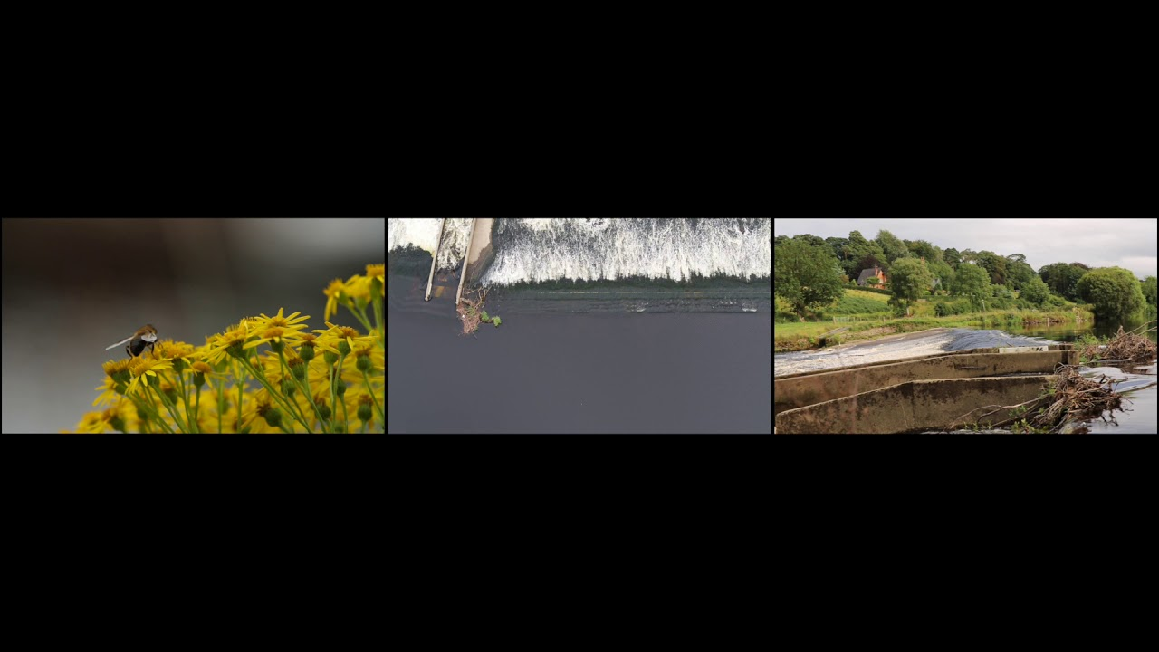Sion 5min HD 1080p