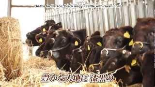 みやざきアピル隊です。 平成24年10月、宮崎県が誇る「宮崎牛」が5...