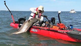 Adrenaline 26kg (57lbs) Corvina (Mulloway) - Extreme Kayak Fishing -1080HD 50fps