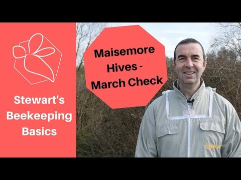 Maisemore Poly Hives - March Check. Beekeeping Basics - The Norfolk Honey Co.