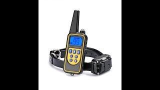 Электронный ошейник для собаки
