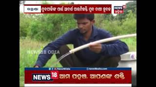 Government scheme helps man to become a successful lemon producer in Subarnapur
