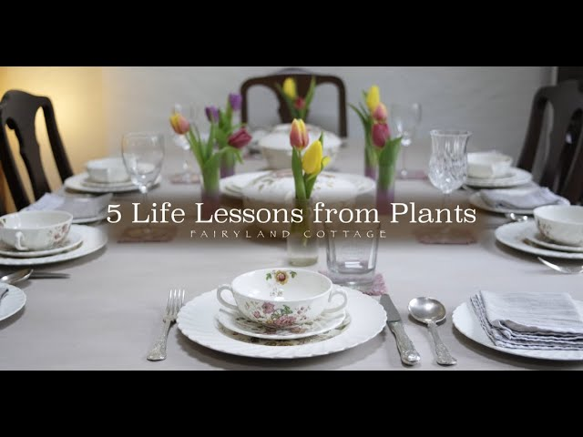 5 Life Lessons from Plants - Fairyland Cottage