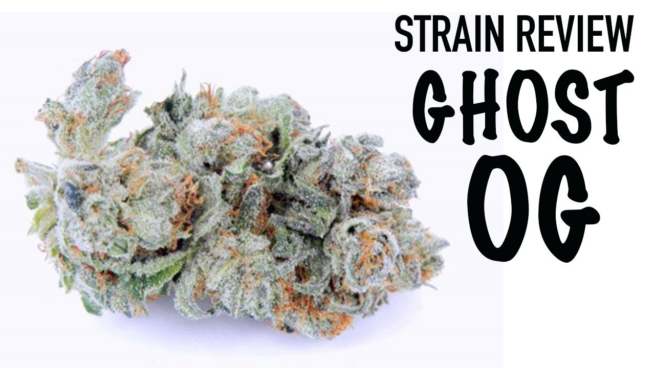 GHOST OG STRAIN REVIEW - OG KUSH