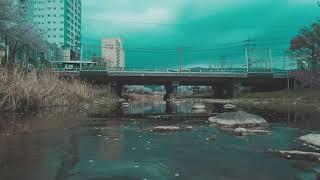 2021년 첫 영상과제 벚꽃 촬영 오즈모 포켓 1080…