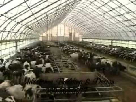 Dairy Barn Agricultural Fabric Covered Farm Buildings Youtube