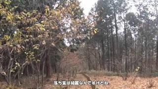 2015/12/15 藤野駅→陣馬山→明王峠→孫山→相模湖 ソロハイク