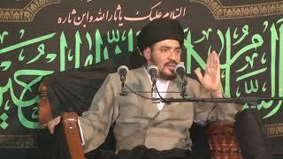 السيد منير الخباز - لقاء الإمام المهدي عجل الله فرجه لا يبذل لكل شخص