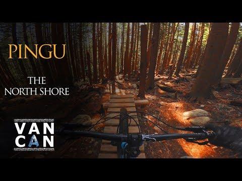 PINGU MT SEYMOUR // Downhill Mountain Biking The North Shore, Vancouver