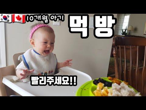 10개월아기이유식 추천