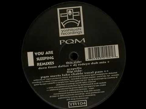 PQM - You Are Sleeping (PQM Meets Luke Chable Vocal Pass)