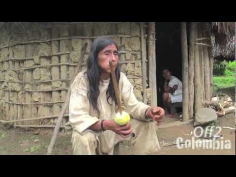 The Lost City - Ciudad Perdida Colombia - Trek In The Jungle To Tayuna