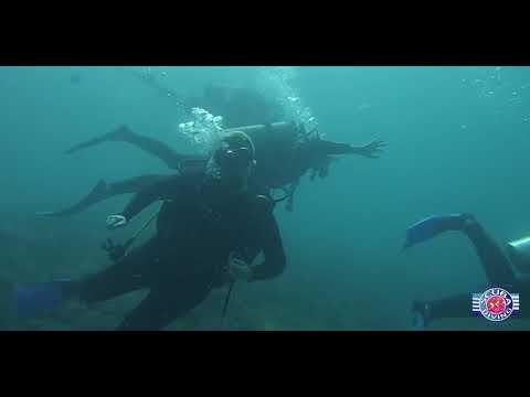 Queensland Scuba Diving Company - Gold Coast, Australia