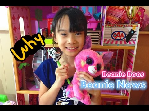 5c4cc31456e Beanie Boo Collection - Beanie Boos Retirement October 2015 - YouTube